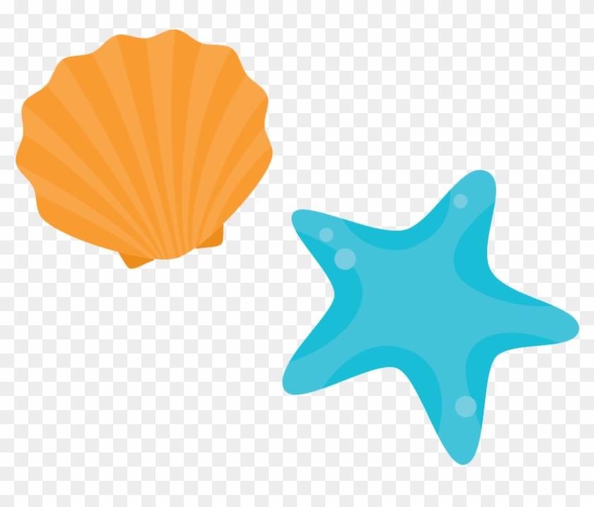shore seashell beach beach shell cartoon shell free clip art chair images clip art characters free