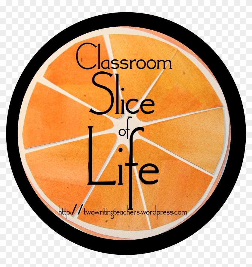 Slice Of Life - Student #708461