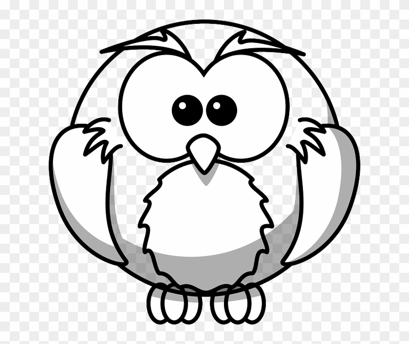 Cute Bird, Owl, Animal, Cute - Black And White Colouring Pages #709390