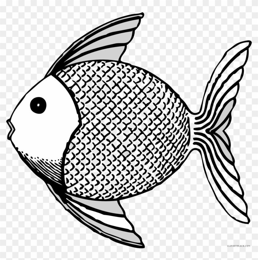Fish Animal Free Black White Clipart Images Clipartblack - Tropical Fish Shower Curtain #710261
