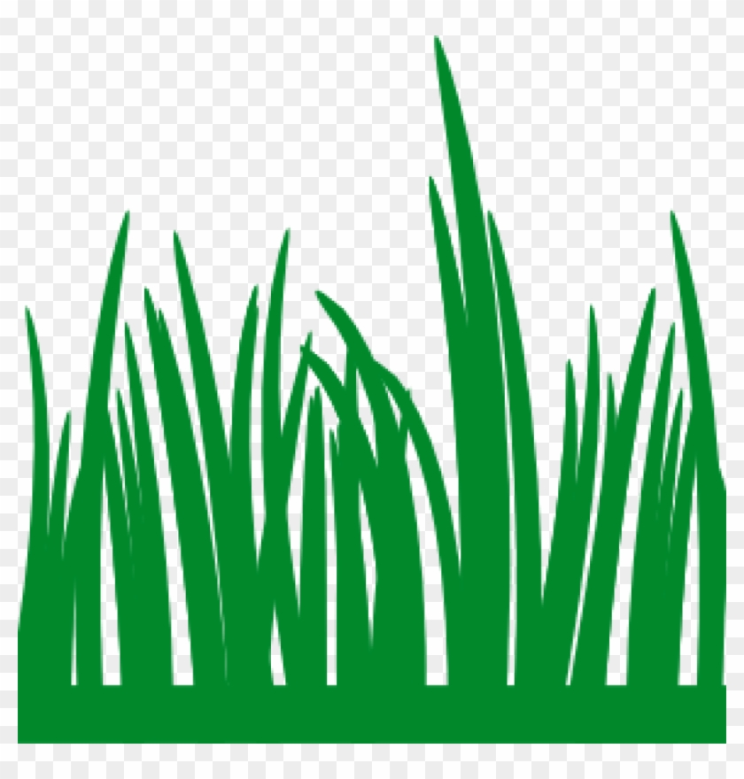 lawn clipart grass clip art at clker vector clip art frickart the rh clipartmax com grass vector art free green grass vector art