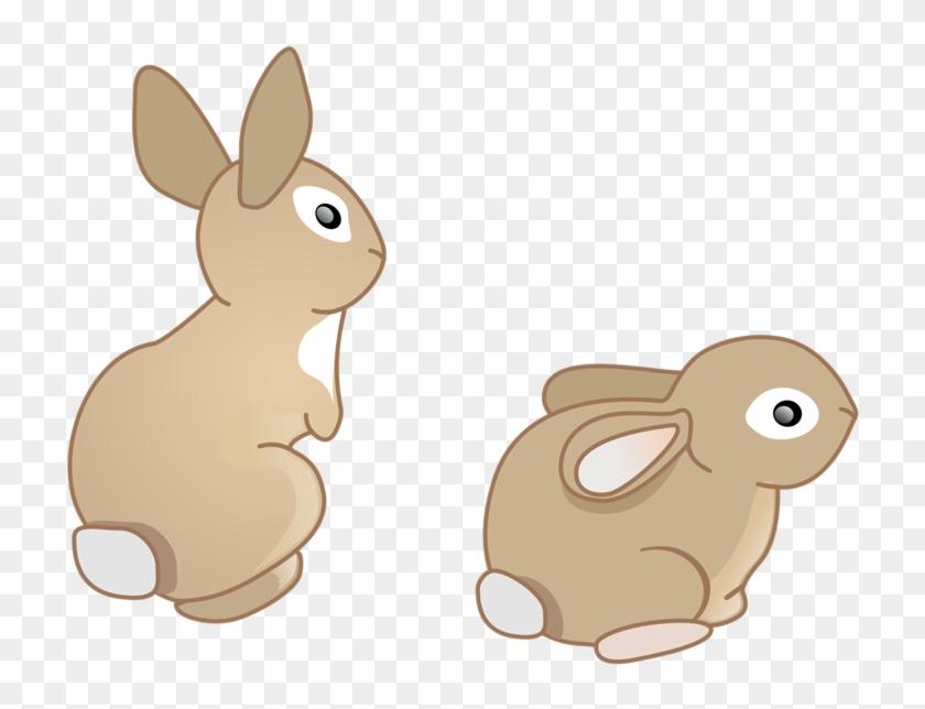 Doméstica Conejo Conejo Europeo De Dibujos Animados