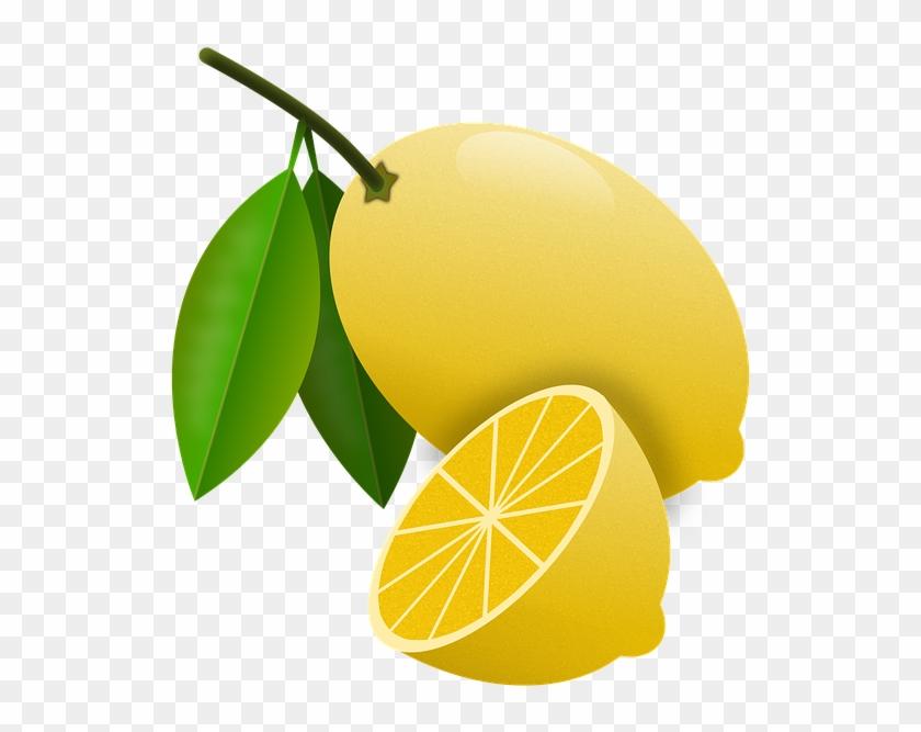 Lemons, Citrus, Fruits, Orchard, Lemon Tree, Acid - Bitter Orange #718627