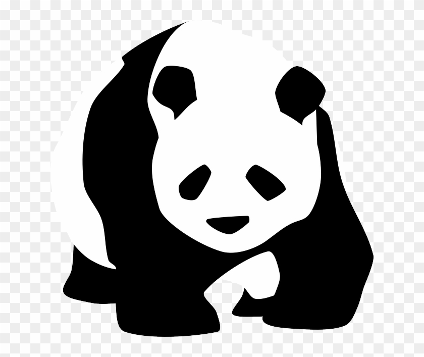 Endangered Species On The Rise The Impact Of Humans - Panda Black And White #129815