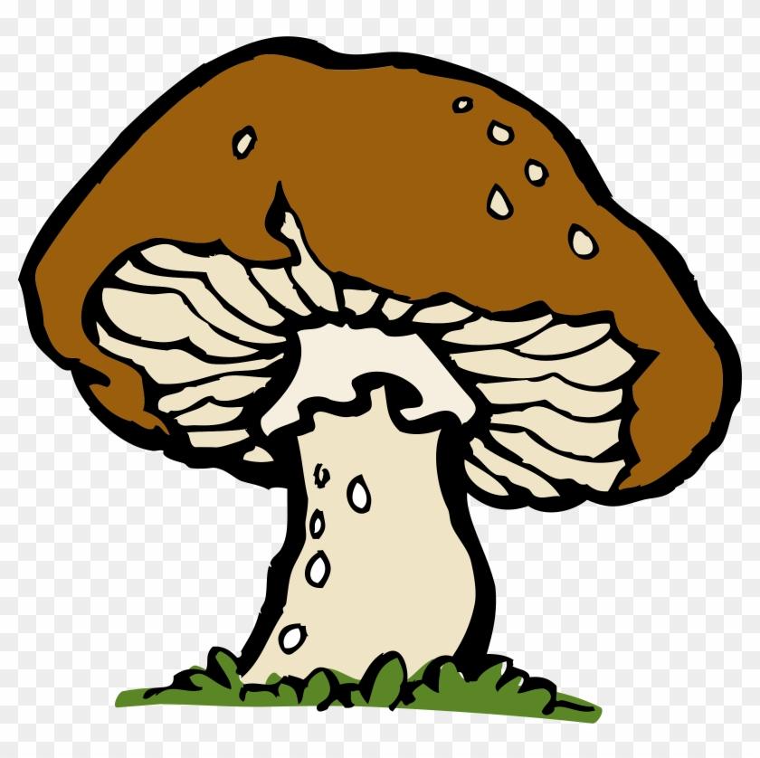 Mushroom Clipart Decomposer - Clip Art Mushroom #130257