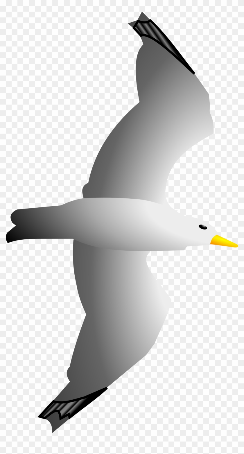 Seagull Clipart Clip Art Library - Seagull Flying Clipart #134320