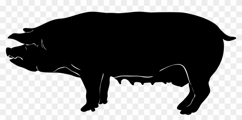 Filepig Silhouette - Pig Graphic #135441