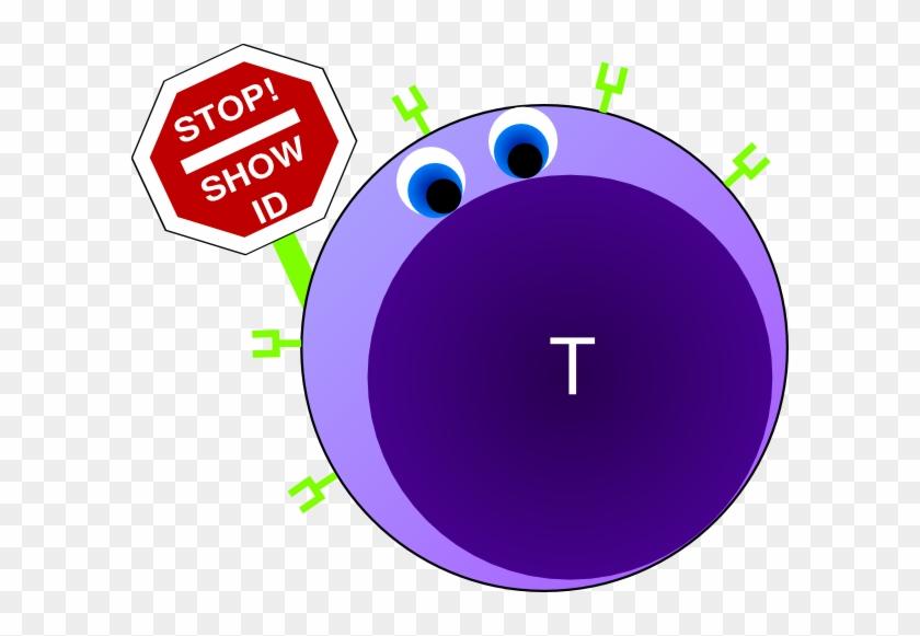 Helper T Cells Clipart #135532