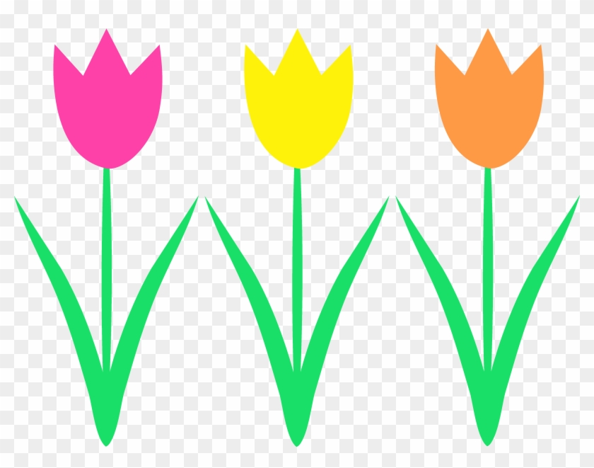 Borders On Pictures - Spring Tulips Clip Art #137766