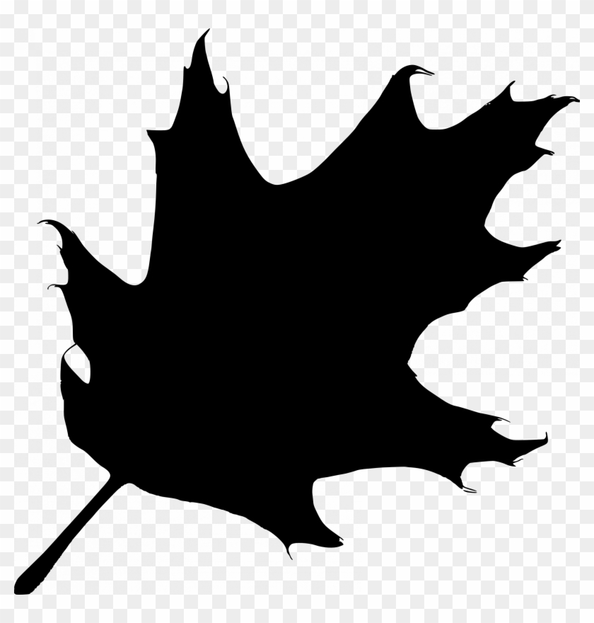 leaves clipart small leaf oak leaf silhouette vector free rh clipartmax com Elm Leaf Clip Art Black and White Oak Leaf Silhouette Clip Art