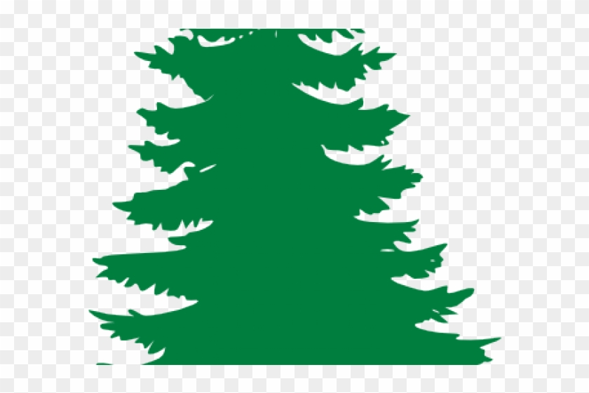 pine tree clipart oregon tree evergreen tree clipart free rh clipartmax com winter evergreen tree clipart evergreen tree clipart black and white