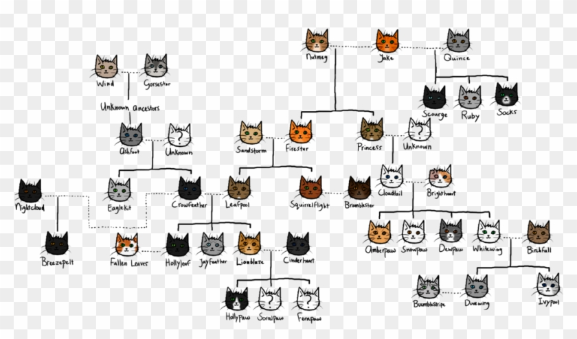 The Gallery For > Warrior Cat Spottedleaf - Brambleclaw Family Tree