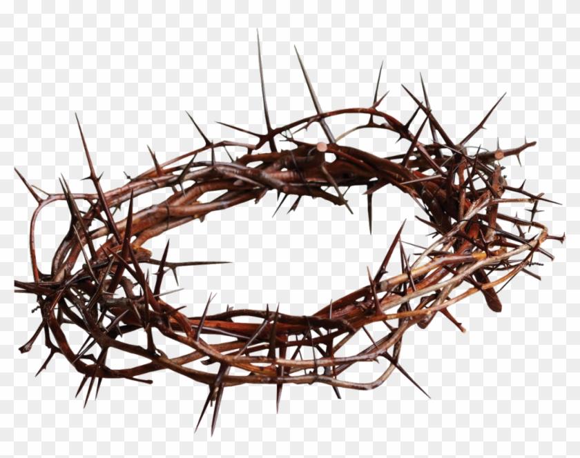 Crown Of Thorns Christian Cross Gospel Thorns Spines Crown Of