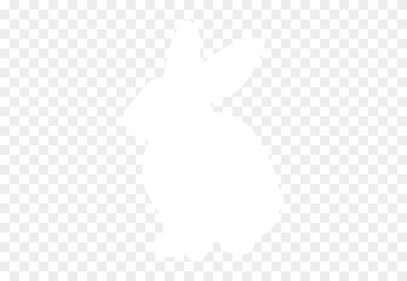 Illustration Of A Rabbit - Domestic Rabbit #737721
