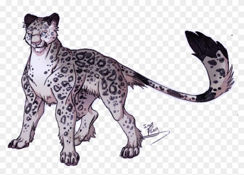 Snow Leopard By Izapug - Snow Leopard Anime Drawings #738025