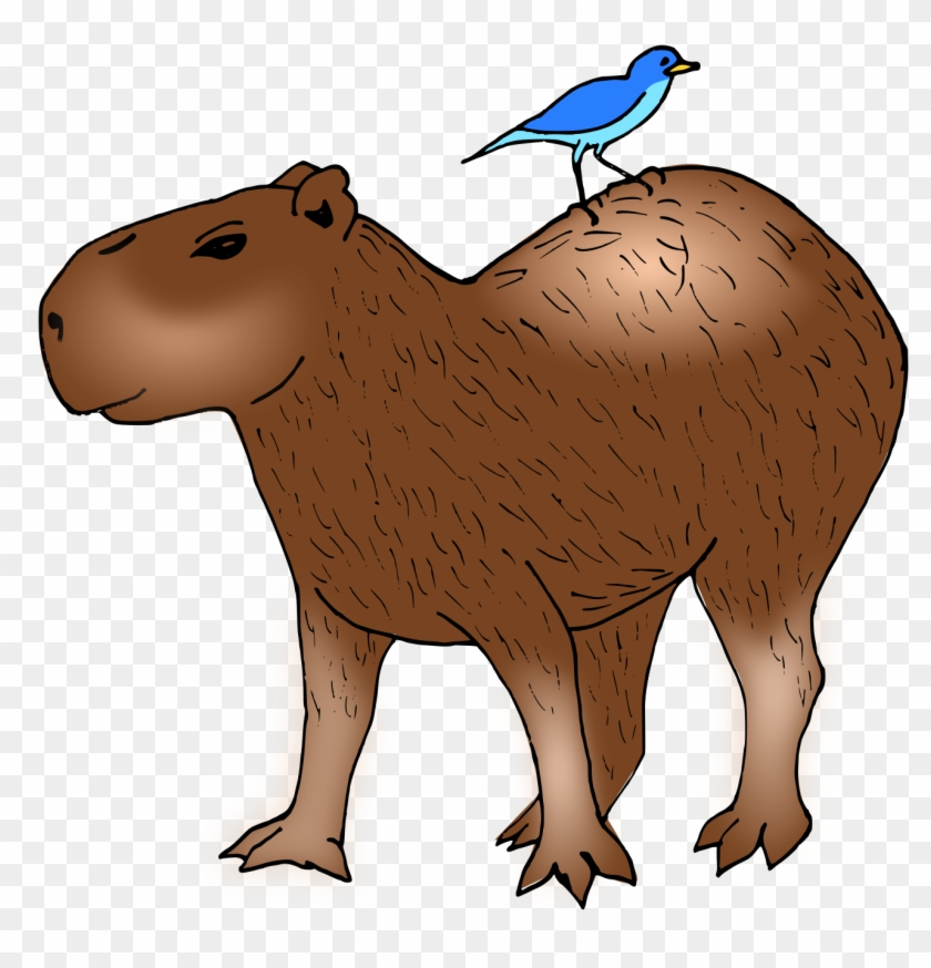 Capybara Hamster Rodent Guinea Pig Clip Art - Capybara Hamster Rodent Guinea Pig Clip Art #739441