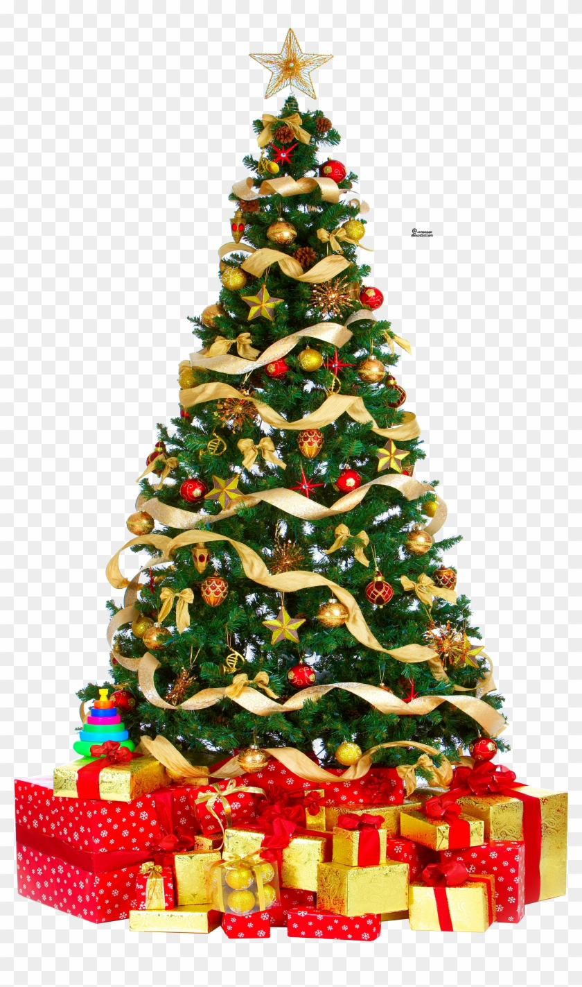 Download Free Photo Report Christmas Tree Gif Animation Free Transparent Png Clipart Images Download Download and share free tree growing gif, cartoon. report christmas tree gif animation