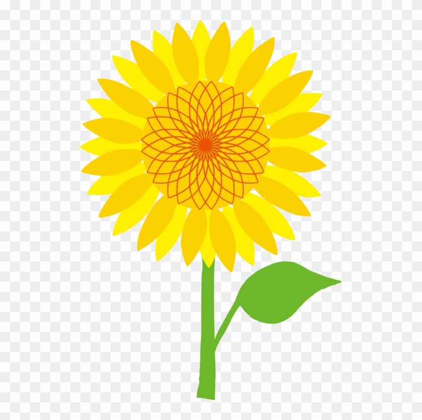 common sunflower scalable vector graphics clip art australian