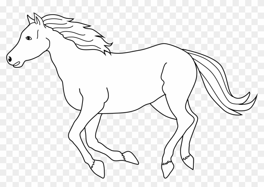 Hold your horses Idiom Pony, holder, horse, mammal png | PNGEgg