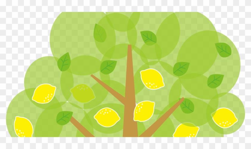 Lemon Tree Clipart - Lemon Tree Clipart #753666