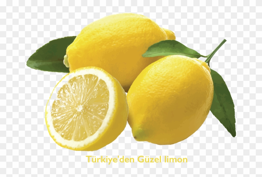 If You Want/need To Start From Seed, Have A Look At - Lemon Africa #753811