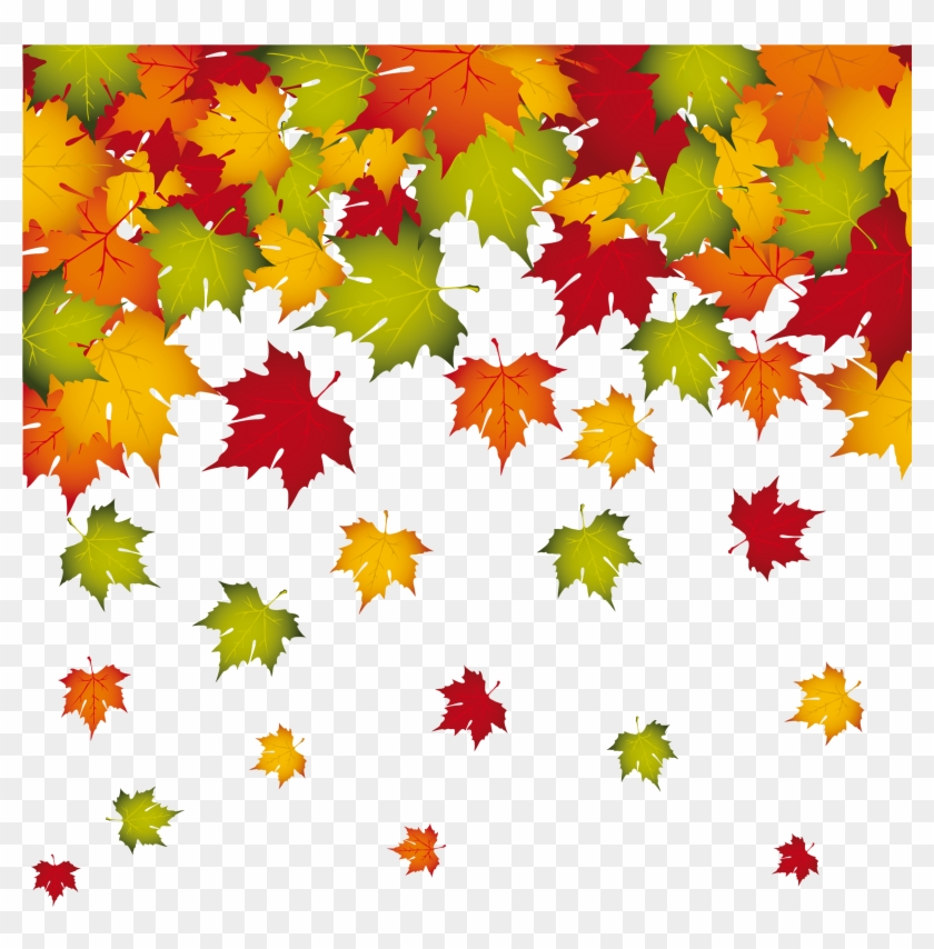 autumn leaves border png leaves falling transparent png free