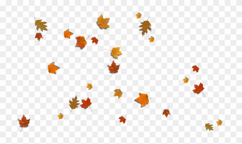 fall leaves corner border png download illustration falling leaves clip art background falling leaves clip art transparent background