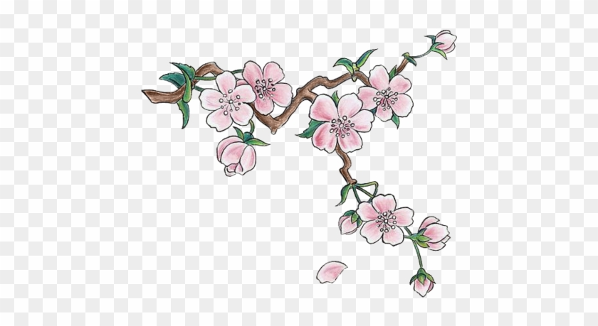 Com Cherry Blossoms And A Waterfall Japanese Cherry Blossoms Drawing Free Transparent Png Clipart Images Download