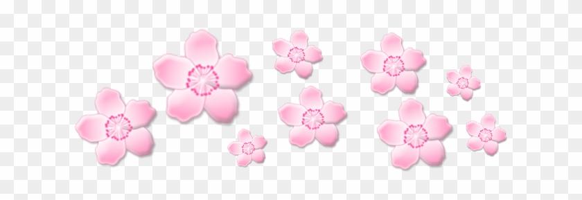 Sakura Png Image With Transparent Background Cute Sticker Tumblr