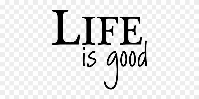 Life Is Good Quotes Impressive Life Is Good Wall Quotes Life