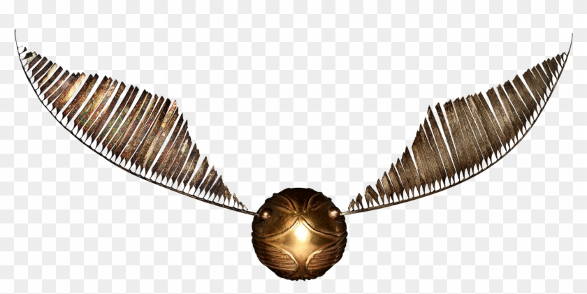 photograph about Golden Snitch Wings Printable named Lord Voldemort Kitu Harry Potter Quidditch Drawing - Golden
