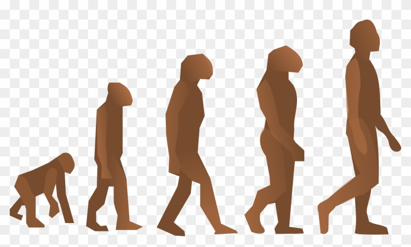 Evolution Steps Clip Art At Clker - Does It Mean To Be Human #139374