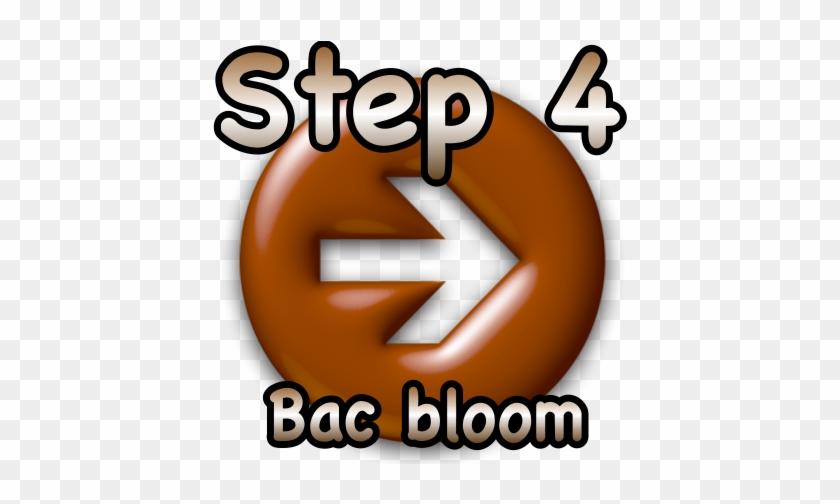 Step 4 Bac Bloom - Step 4 Clipart #139379