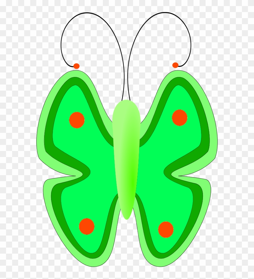Butterfly Front View - فراشات كرتونيه #140499
