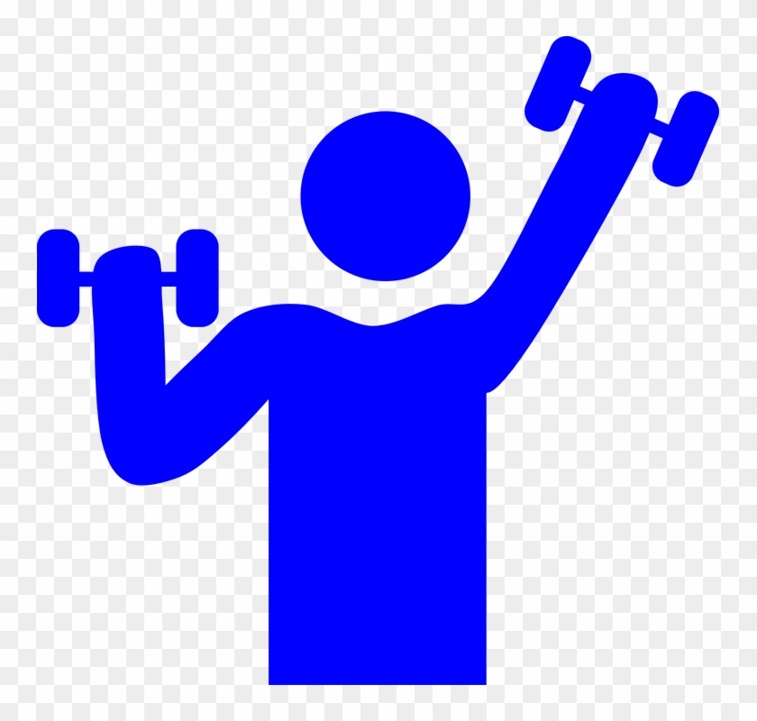Gym Weight Lifting Muscle Exercise Fitness Male - Fitness Clipart #142526