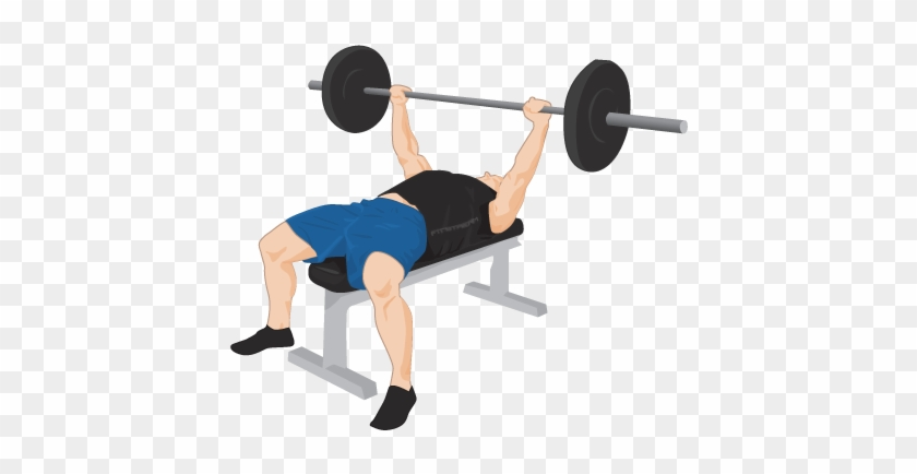 Exercise Bench Png Transparent Images - Bench Press Weights #142810