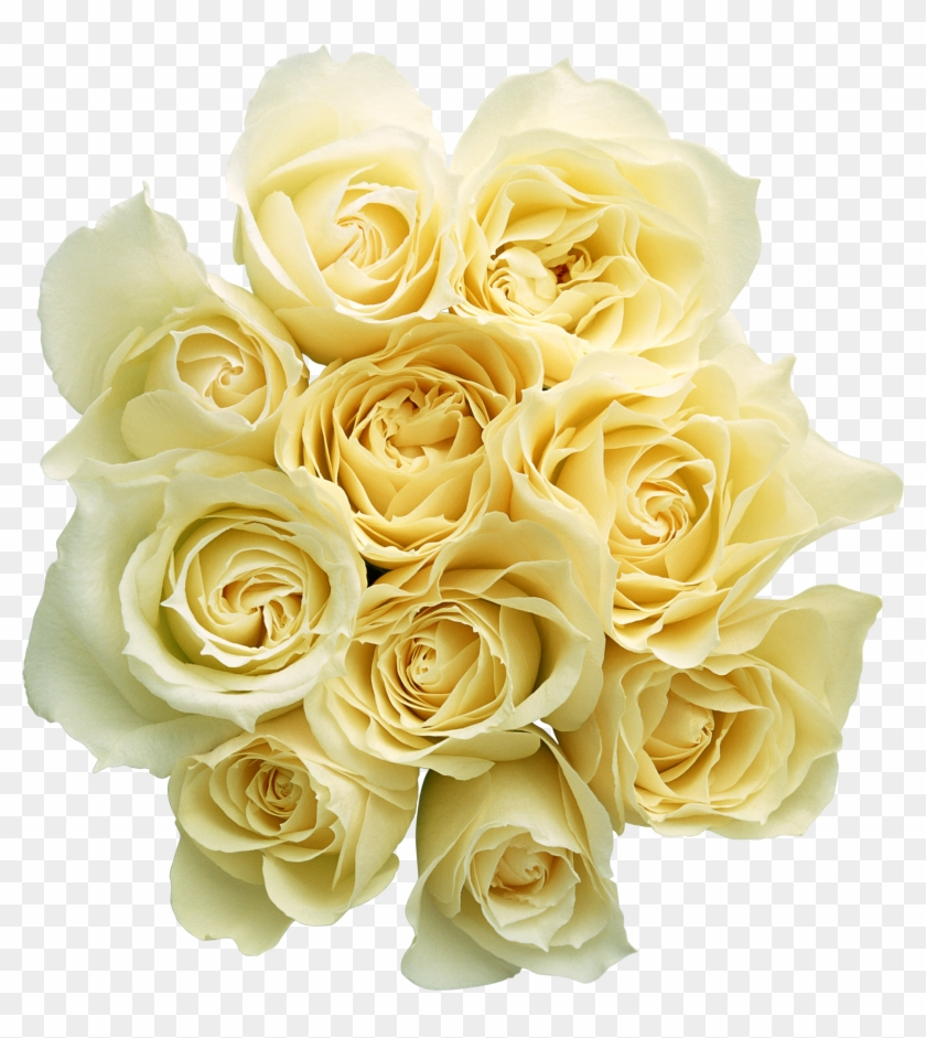 Png形式でダウンロード - Bouquet Yellow Roses Png #771731