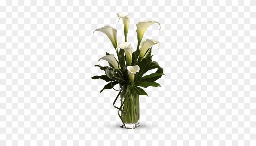 My Fair Lady By Teleflora - Calla Lily Flower Arrangement #778688