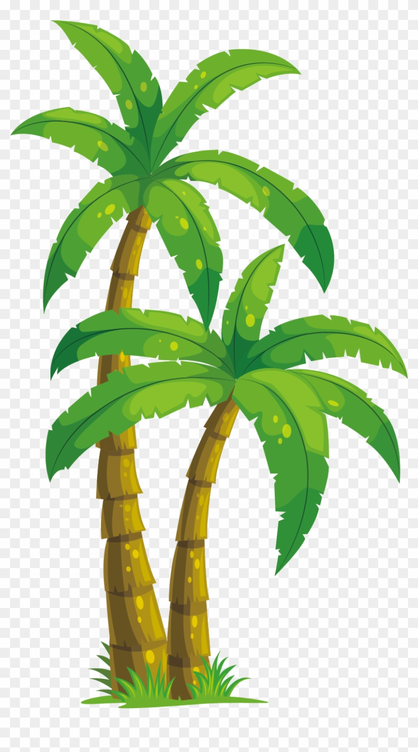 Arecaceae Coconut Tree Illustration - Animated Palm Tree Png #789729