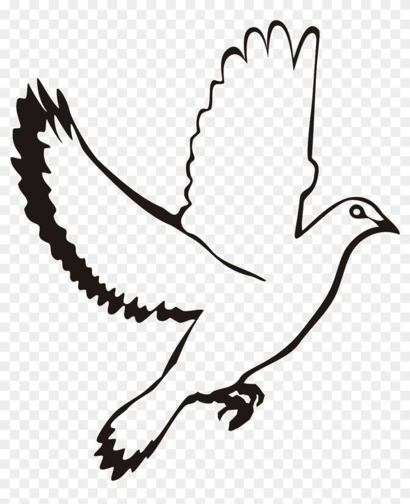 White - Flying Dove Vector Png #790634