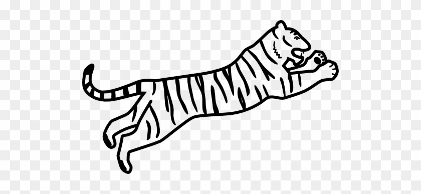 Tiger Catching Bengal Tiger Easy Drawing Free Transparent Png