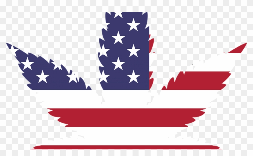 American Weed - Marijuana Leaf Usa #794199