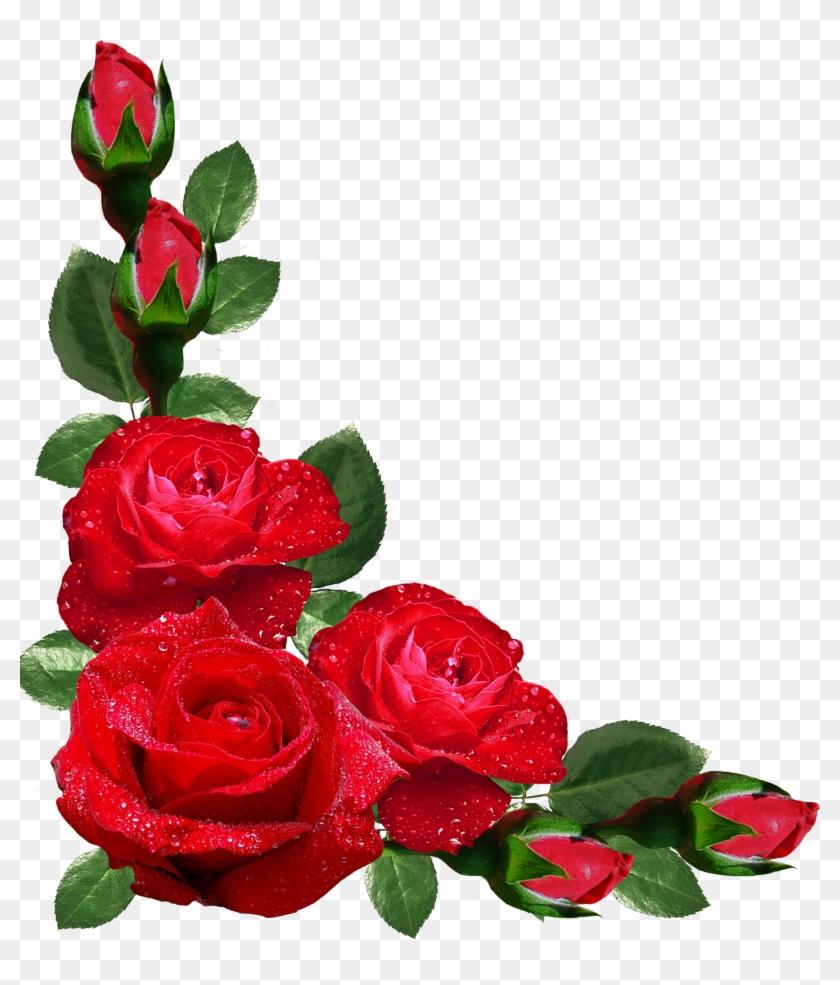Flower Rose Picture Frames Japanese Border Designs - Rose Flower ...