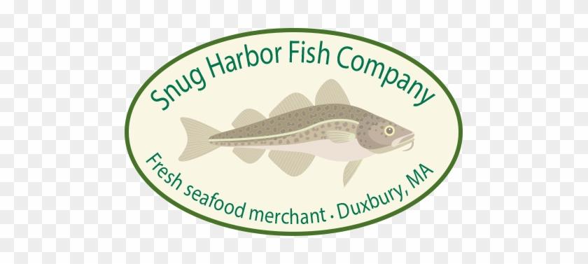 Snug Harbor Fish Company - Trout #797681