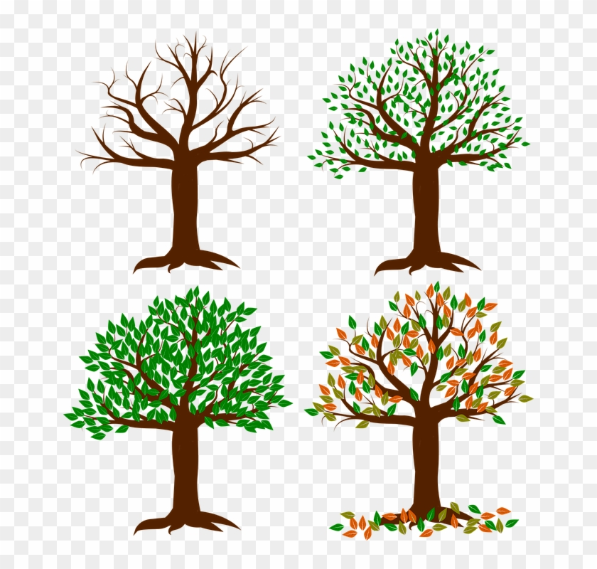 Spring Tree Clipart 20, - Four Seasons Clipart Tree Transparent #797710