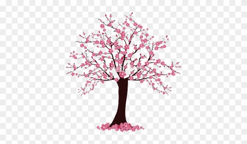Cherry Blossom Tree Drawing - Cherry Blossom Tree Easy Drawing #797862
