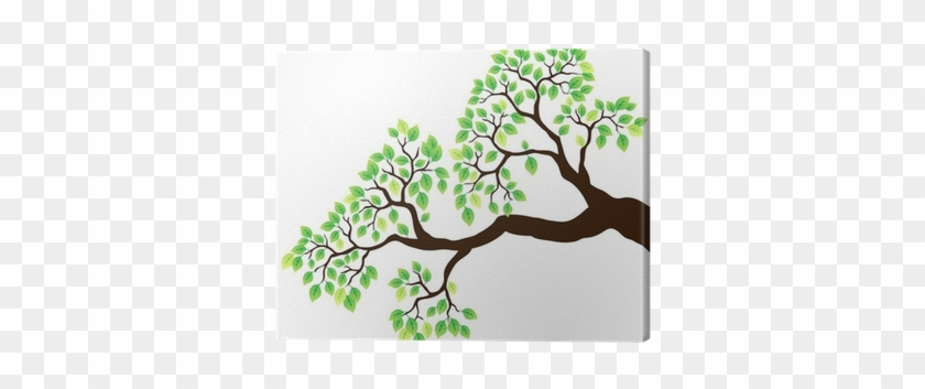 Tree Branch With Green Leaves 1 Canvas Print • Pixers® - Vector Tree Branch Leaves #802728