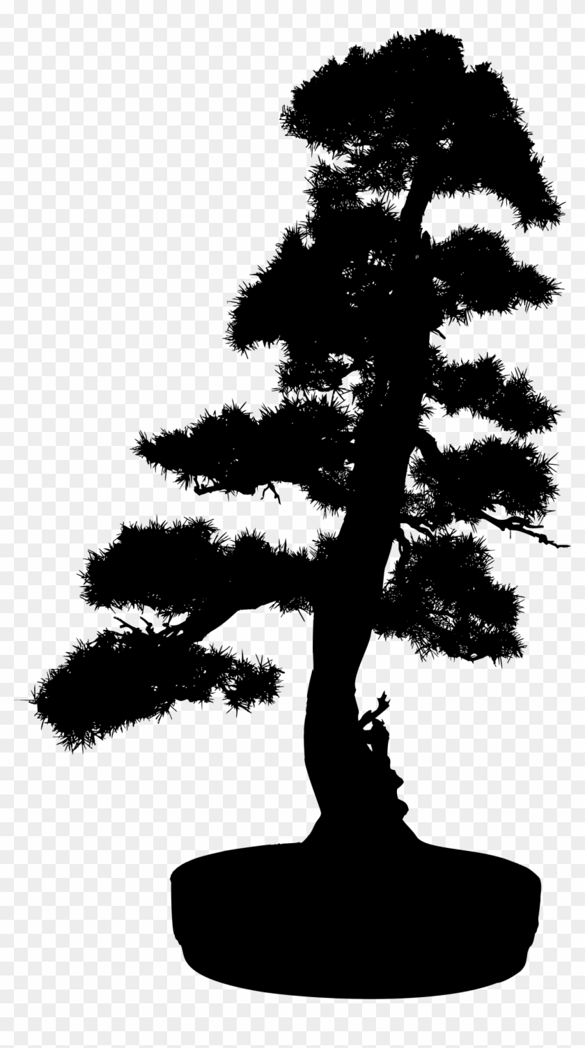 Big Image - Bonsai Tree Silhouette Png #803674