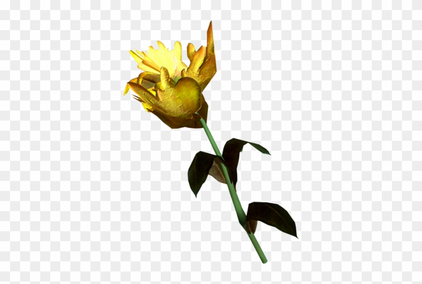 Yellow Mountain Flower - Skyrim Yellow Mountain Flower #803882