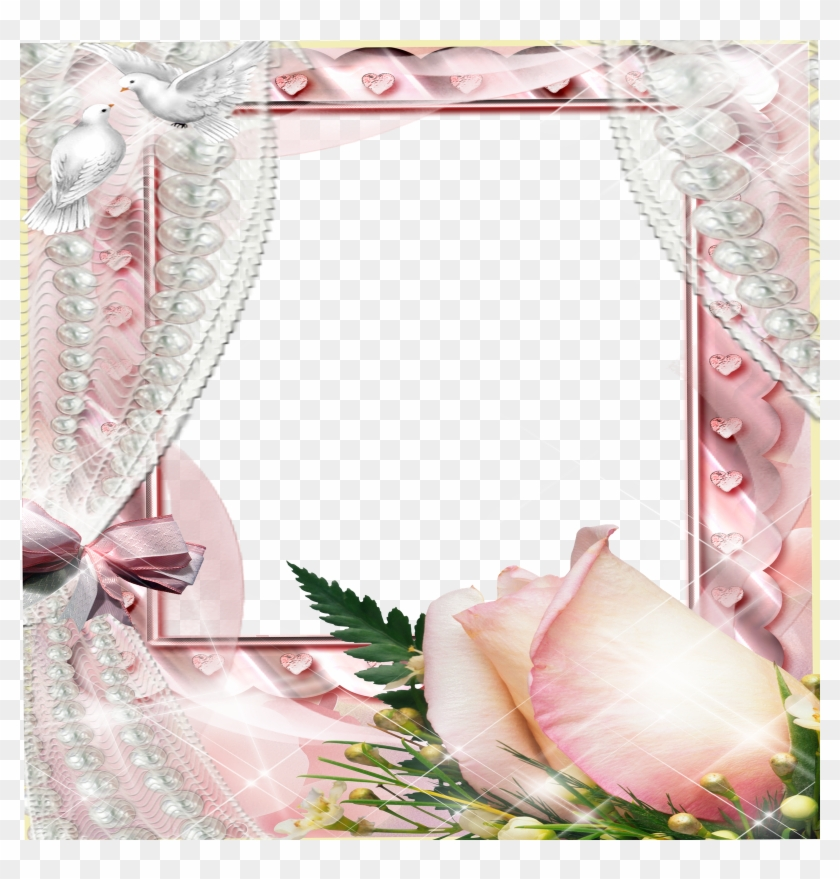 Create Photo Frames Online Beautiful Flowers Source - Pink Roses And ...